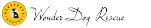 WonderDog-Logo-Text1