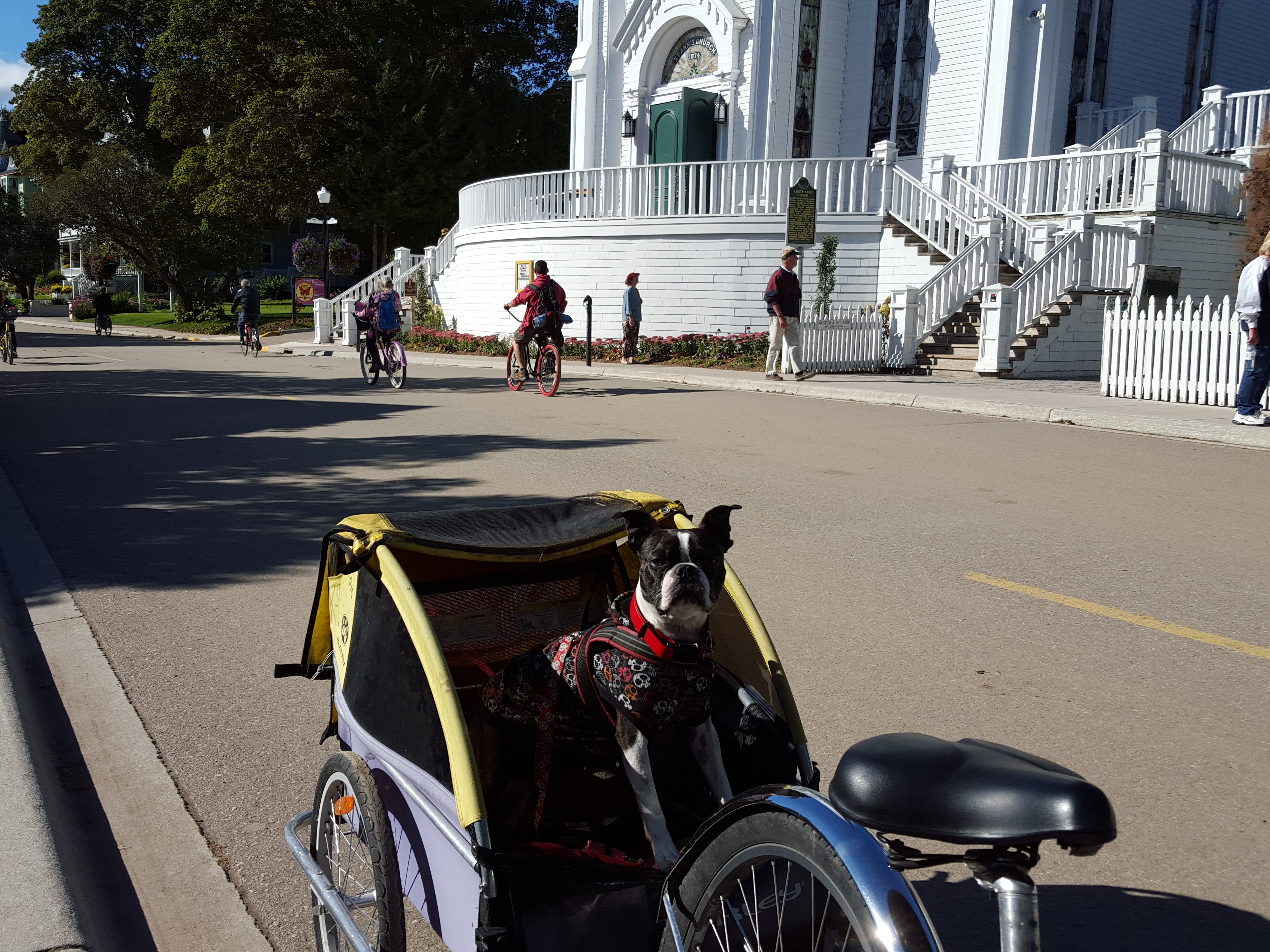 Hotels On Mackinac Island That Allow Dogs
