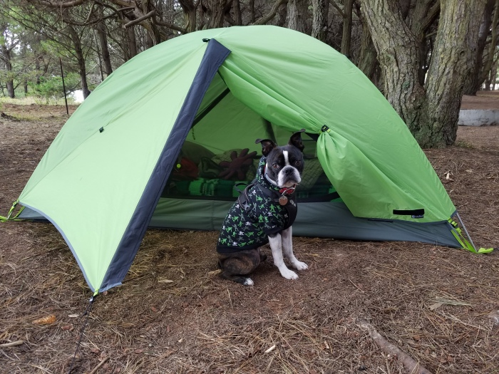 This year's Epic Trip-New items for camping with a dog and what I've